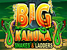 Игровой автомат Биг Кахуна Змеи И Лестницы