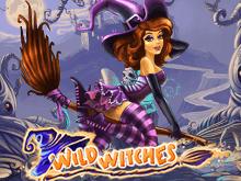 Дикие Ведьмы в интернет казино