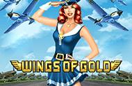 Деньги в игровом автомате Золотые Крылья